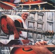 Larry_coryell-cedars_of_avalon_span3
