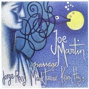 Joe_martin-passage_span3