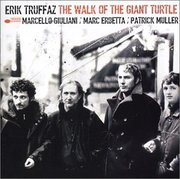 Erik_truffaz-the_walk_of_the_giant_turtle_span3