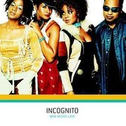 Incognito-who_needs_love_span3