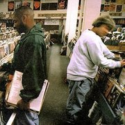 Dj_shadow-endtroducing_span3