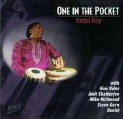 Badal_roy-one_in_the_pocket_span3