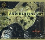 Another_fine_day-salvage_span3