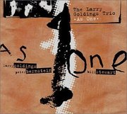 Larry_goldings_trio-as_one_span3
