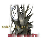 Sonic_liberation_front-ashe_a_gogo_span3