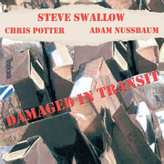 Steve_swallow-damaged_in_transit_span3