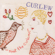 Curlew-meet_the_curlews_span3