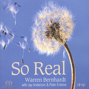 Warren_bernhardt-so_real_span3