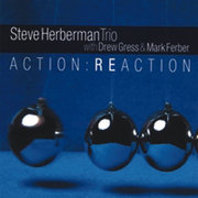Steveherbermantrio_actionreaction_span3