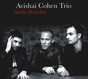 Avishai_cohen_trio-gently_disturbed_span3