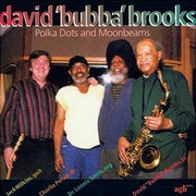 David_bubba_brooks-polka_dots_span3
