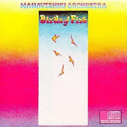 Mahavishnu-birds_of_fire_span3
