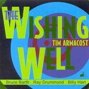 Tim_armacost-wishing_well_span3