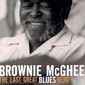 Brownie_mcghee-last_great_blues_hero_thumb