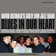 David_ostwald-blues_in_our_heart_span3