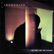Incognito_no_time_like_future_span3
