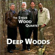 Steve_wood-deep_woods_span3