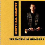 Scott_hall-strength_in_numbers_span3