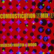 Medasek_martin_wood-combustication_remix_span3