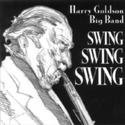 Harry_goldson-swing_swing_swing_span3