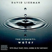 David_liebman-water_span3