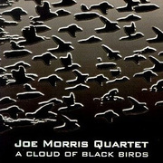 Joe_morris-cloud_of_blackbirds_span3