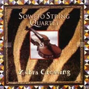 Soweto_string_quartet-zebra_crossing_span3