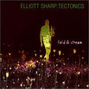 Elliot_sharp-tectonics_span3