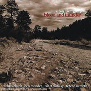 Aaron_irwin-blood_and_thunder_span3