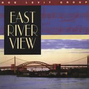Rob_levit-east_river_view_span3