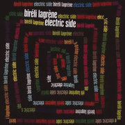 Bireli_lagrene-electric_side_span3