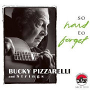 Bucky_pizzarelli-hard_to_forget_span3