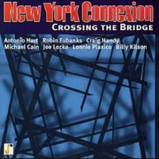 New_york_connexion-crossing_the_bridge_span3