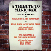 Shun_kikuta-tribute_to_magic_sam_span3