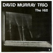 David_murray-hill_span3