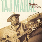 Taj_mahal-senor_blues_span3