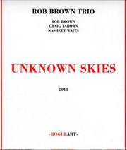 Robbrowntriounknown_skies__2011_span3