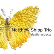 Cd_matthew-shipp-trio_span3