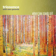 Cd_triosence-with-sara-gazarek_span3