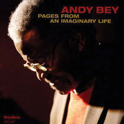 Andybey_pagesfromanimaginarylife_span3