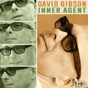 David-gibson-inner-agent-cover_span3