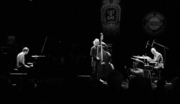 Fest-jazz-neil-cowley-trio-05_span3