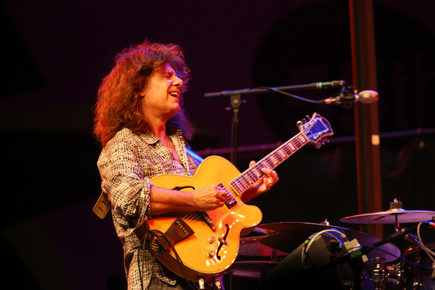 Pat_metheny_mjf55_9