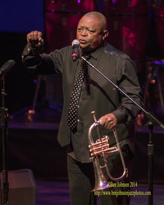 Hugh_masekela_____dsc3593_depth1