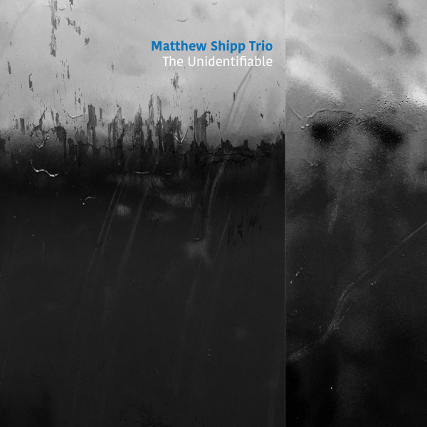 22. Matthew Shipp Trio: <i>The Unidentifiable</i> (ESP-Disk')
